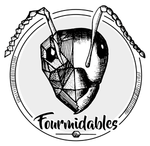 thumb_logo-fourmidable